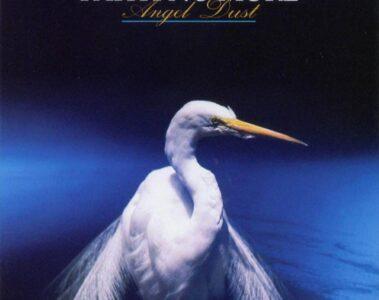 Angel Dust