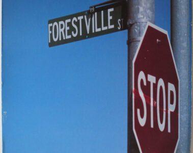 924 Forestville St.
