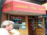 Lemon Tree Cafe