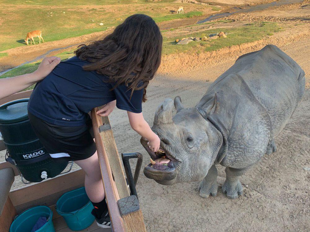 Feeding Rhino